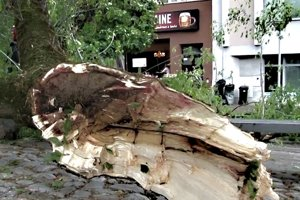 Odlomený konár sa zrútil na terasu kaviarne priamo na námestí.