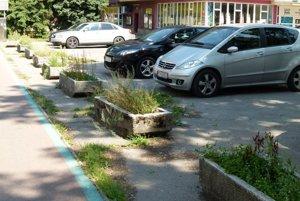 Mesto sľúbilo, že z betónových črepníkov zmizne tráva a vysadia tam kríčky.