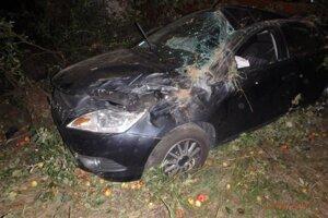 Vodička vyviazla z ľahkými zraneniami.