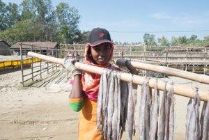 Sušenie rýb na slnku.