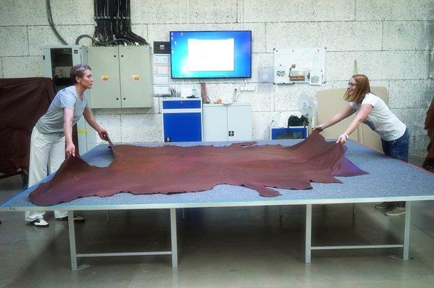Projektor na kože nasvecuje tvary dielov nábytku, ktoré do materiálu na milimetre presne vyreže vodný lúč.