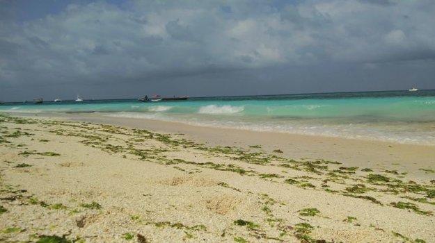 Zanzibar má ideálne dovolenkové počasie takmer celý rok.