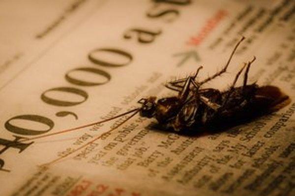 Austrálske šváby sa pohybujú aj po smrti.