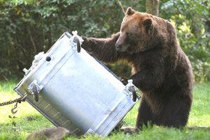 Vytvoriť kontajner, do ktorého by sa medveď nedostal je len časť úspechu. Dôležitá je aj disciplinovanosť obyvateľov.