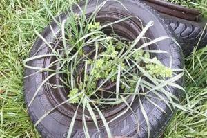 Kam spoužitými pneumatikami? Často končia vprírode.