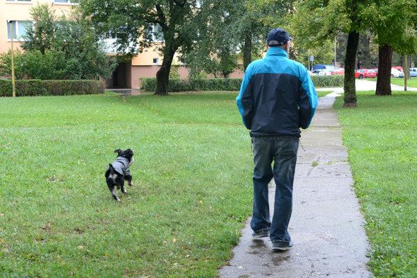 Výbeh pre psy na Humenskej. Od októbra by tu mal vyrásť plot, ktorý vyhradí priestor pre psičkárov.