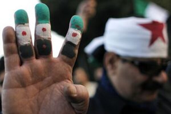 Sýrsky demonštrant v Káhire.