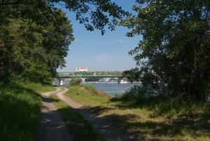 Zanedbaný lužný les na brehu Dunaja sa má zmeniť na lesopark.
