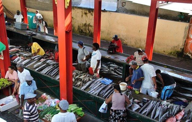 Čerstvo ulovené ryby sa predávajú na miestnych trhoch