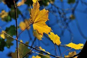 Farebná jeseň na Kysuciach.
