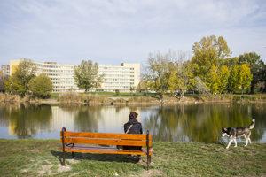 Zrevitalizované jazero Rohlík.