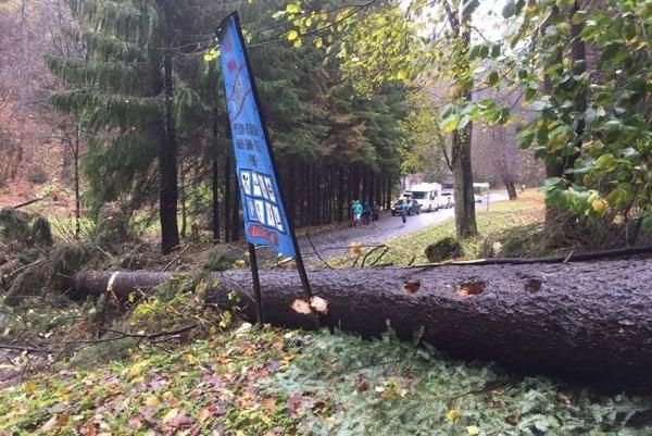 Cez obchádzku Kremnických Baní od Kremnice smerom na Skalku spadol cez cestu obrovský strom a obmedzil dopravu.