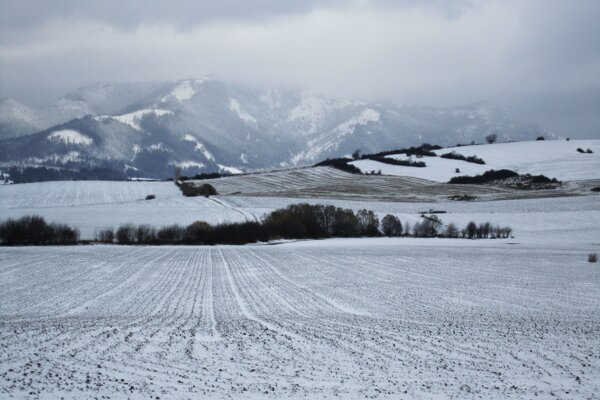 Zima v Liptove.