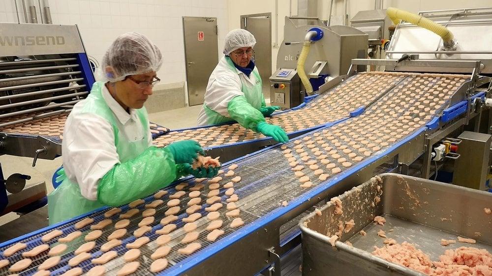 Mäso kontrolujú zamestnankyne pri páse.