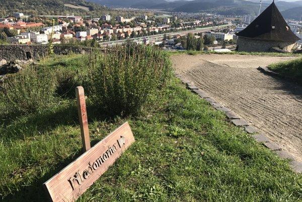 Hladomorňa Trenčianskeho hradu.