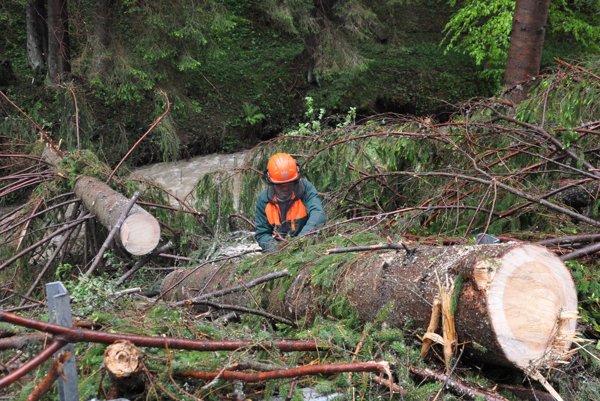 Práca v lese je ťažká a nebezpečná.