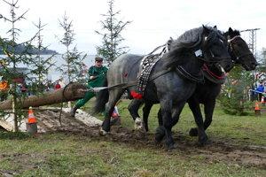 Tibor Tóth z Kolárova súťaží v disciplíne práca s drevom na Furmanských pretekoch v Hričovskom Podhadí.