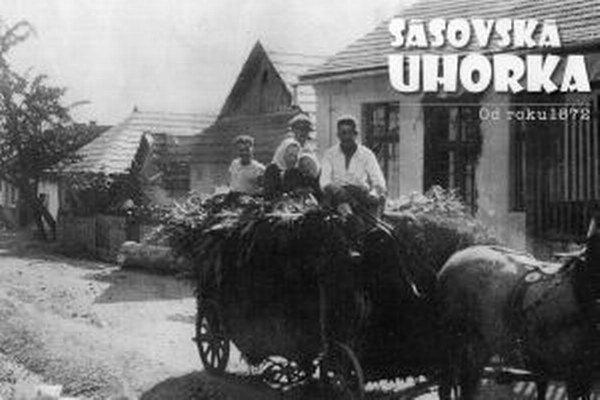 Návrat starých Sásovanov z polí.