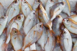 Polynenasýtené mastné kyseliny s dlhým reťazcom. Príkladom sú omega-3 mastné kyseliny. Tieto sa nachádzajú najmä v tučných rybách a rybích olejoch, ale aj v niektorých iných olejoch. Mnohé potraviny sú nimi dodatočne obohatené.
