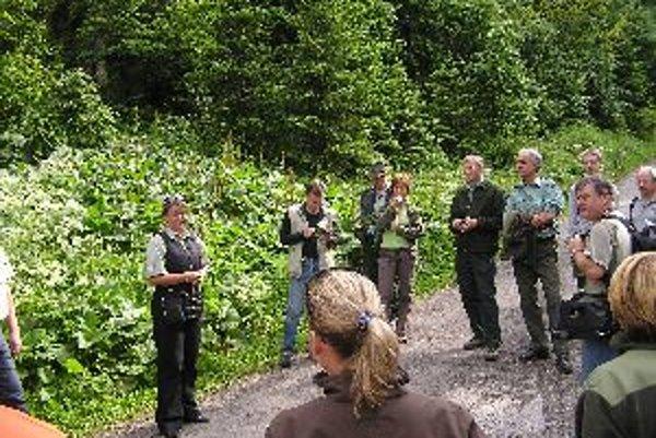 Odborníci hľadajú možnosti, ako lesom pomôcť