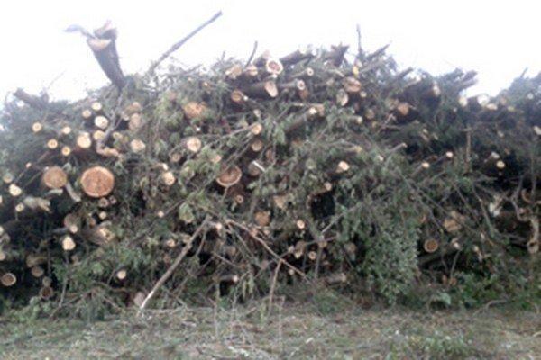 Skládku dreva miestni odfotili a s podnetom na prešetrenie poslali Združeniu Slatinka.