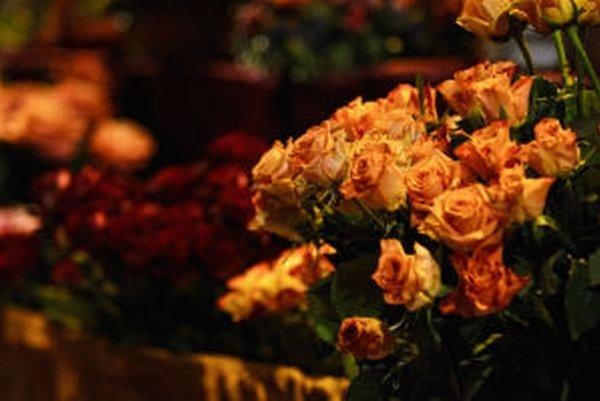 Kvetinová šou a výstava ruží Flora Magica v Banskej Štiavnici už túto sobotu.