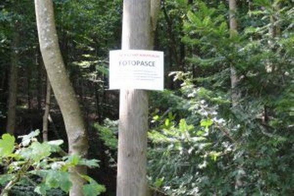 Upozornenie pre zlodejov a neporiadnych návštevníkov lesa.