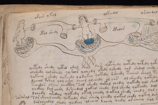 Voynichov rukopis je plný zvláštnych ilustrácií.