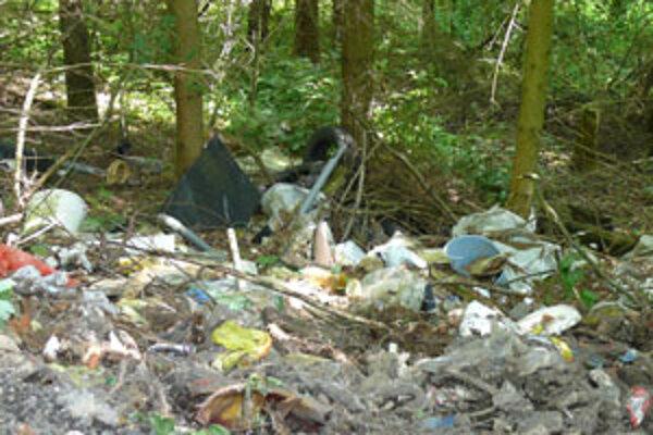 Odpad, ktorý ľudia vysypú pri ceste je pre medvede lákadlom.