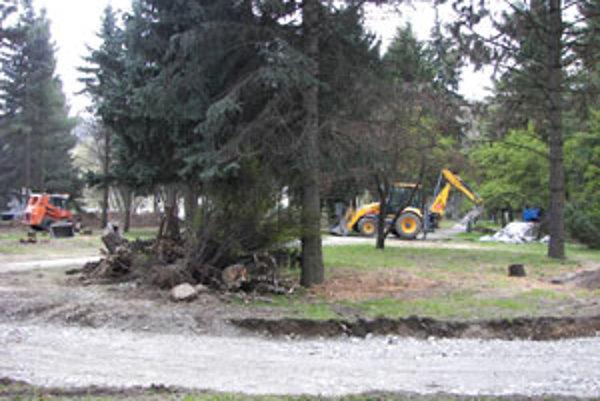V parku vyrúbali okolo šesťdesiat stromov.