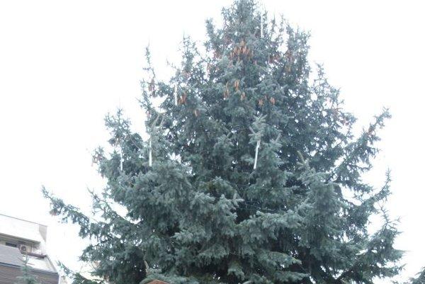 Vianočný stromček na námestí v Trnave.