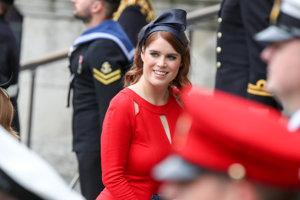 Eugenia z Yorku (narodená 1990) je britská princezná a dcéra Andrewa, vojvody z Yorku a Sarah, vojvodkyne z Yorku.