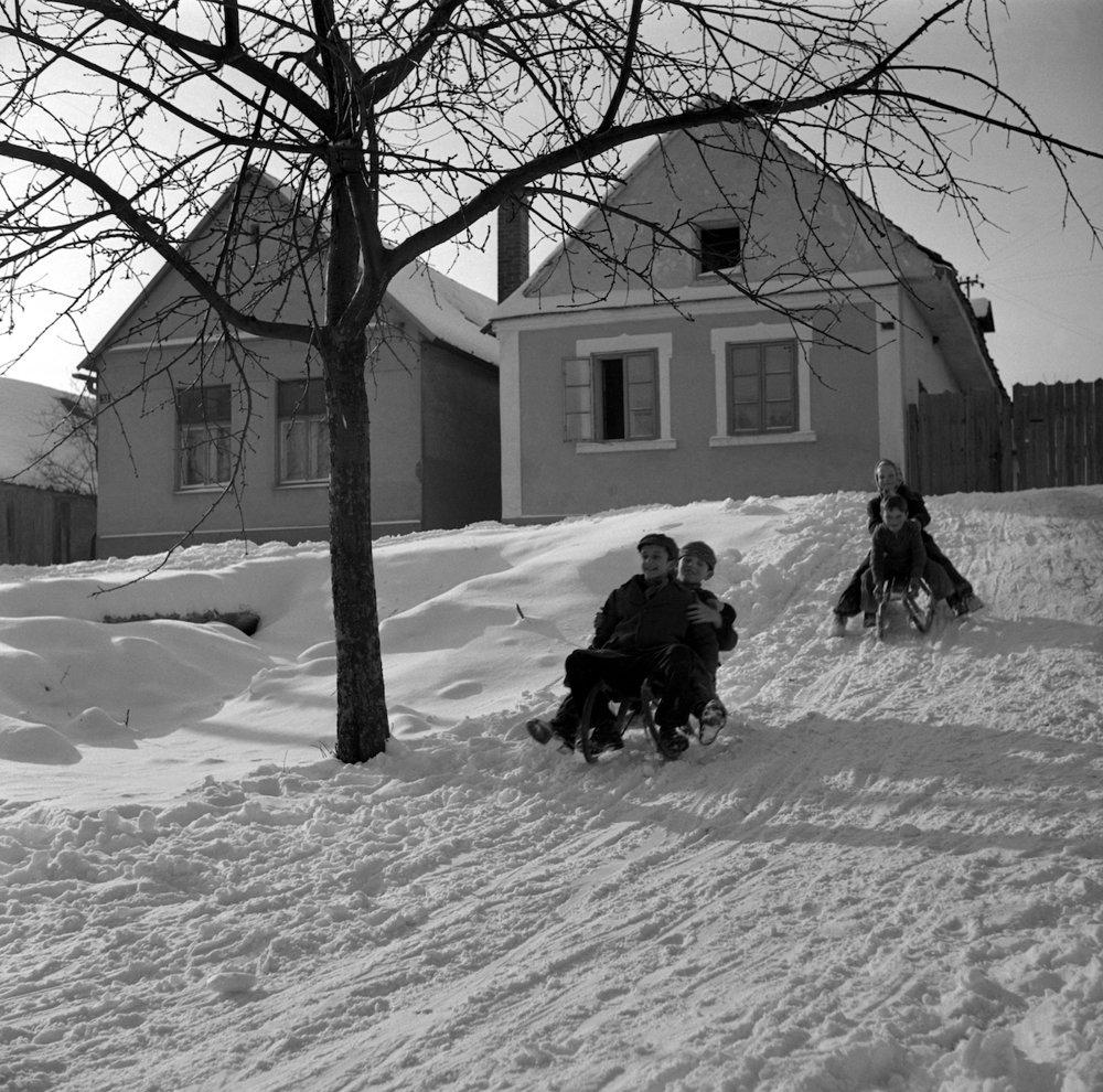 Na archívnej snímke z 22. januára 1955 zimné radosti detí z vinohradníckej obce Hliník (dnešný Limbach) v okrese Pezinok.