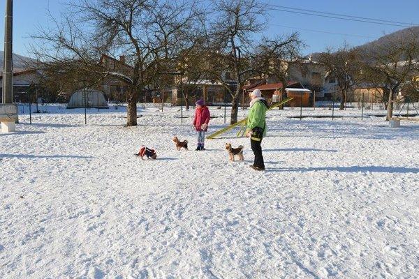 V Podlaviciach sa  potešili majitelia psov.