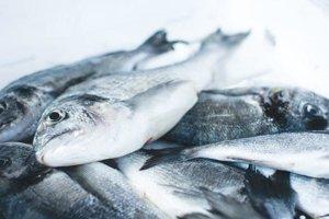 Ryby a morské plody. Napríklad losos, sardinky, pstruhy, tuniaky, makrely, krevety, ustrice, mušle a kraby.