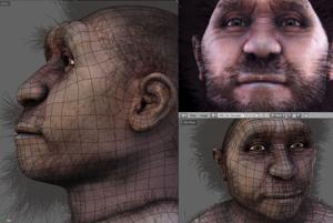 Homo erectus pekinensis.