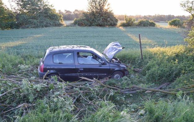 Auto skončilo v priekope, kde narazilo do stromu.