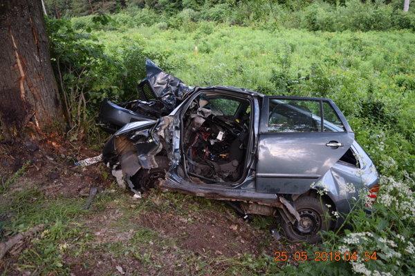 Vodič pri nehode zahynul.