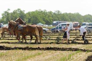 Prehliadku odrôd poľnohospodárskych plodín, ochrany a výživy rastlín, ako aj hospodárskych zvierat a poľnohospodárskej techniky, môžu vidieť návštevníci 7 ročníka Celoslovenských dní poľa 5 a 6 júna 2018 v Dvoroch na Žitavou.