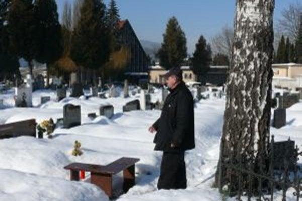 Hrob pána Seemanna. Zatiaľ je čistý, no  o chvíľu ho zašpinia vtáky svojimi výkalmi.