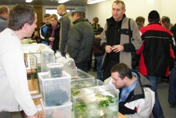 Po prvýkrát sa na burze prezentovali verejnosti akvaristi.