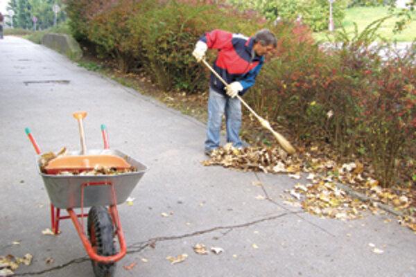 S jeho odpratávaním majú mestá najviac práce. Opadáva postupne celú jeseň. Musí sa zametať, aby, keď naň naprší, neohrozovalo šmykľavé lístie chodcov a motoristov.⋌FOTO: AUTORKA