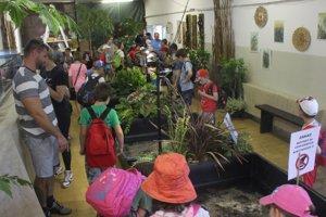 Návštevníci v sekcii vodných korytnačiek.