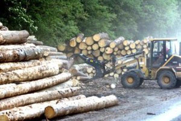 Poslanca obecného zastupiteľstva v Kotešovej obviňujú z podvodov s drevom.