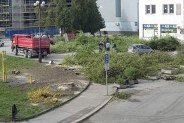 V centre Žiline vyrúbali v sobotu predpoludním bez povolenia a mimo obdobia vegetačného pokoja niekoľko stromov.