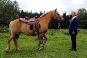 Keď Dáša potrebuje, vysadne na jedného zo svojich trochu koní a zájde medzi ľudí. Inak ju nezaujímajú.