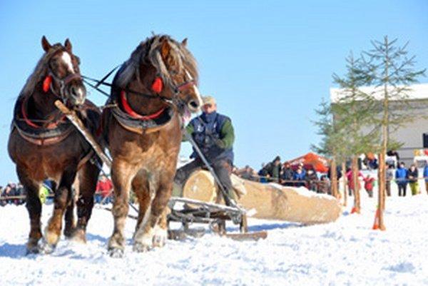 Furmanský slalom absolvovalo 16 konských záprahov.