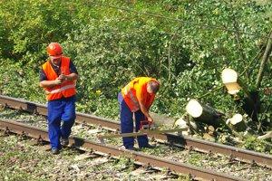 Na železničnú trať medzi Považskou Bystricou a Púchovom spadol po búrke strom.