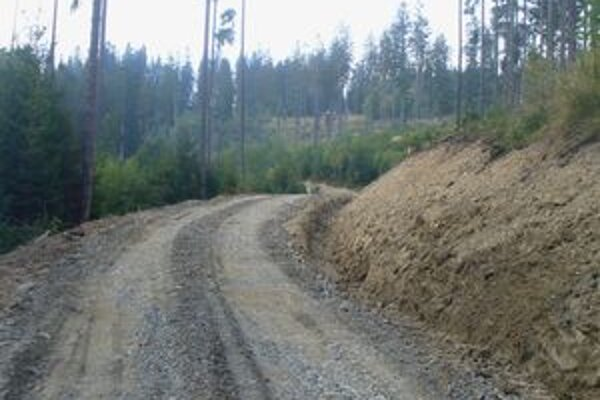 Na lesnej ceste prebiehajú v týchto dňoch hrubé stavebné úpravy.