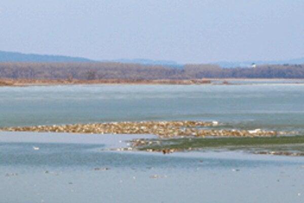 Nový ostrov? Ani náhodou. Ide len o jednu z viacerých hŕb odpadkov, ktoré sa po roztopení ľadu a snehu vznášajú na hladine Oravskej priehrady.